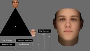 Human Face Interpolation