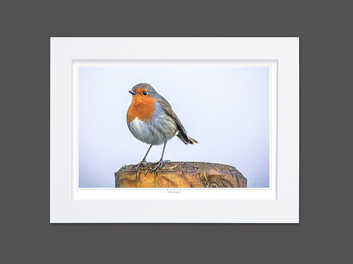 Robin by Post