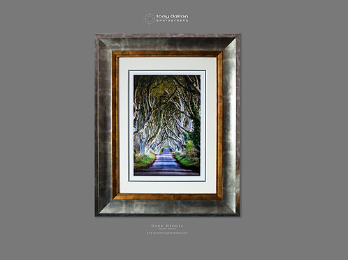 Dark Hedges Special Edition