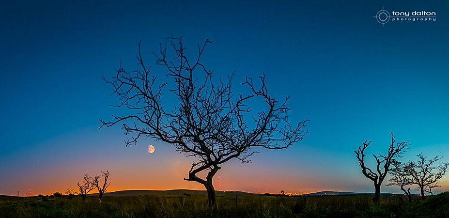 Blackmountain and Divis Moonrise