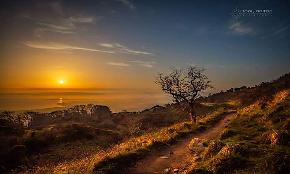 Sheep's Path, Sunrise, Cavehill