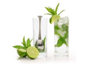 Mint-&-Lime.jpg