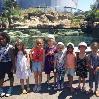 New York Aquarium Visit