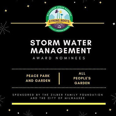 2017 Storm Water Managment Award Nominees