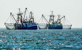 Pesca.jpeg