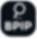 BPIP Logo 3.PNG