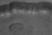 Hybrid&Icon_Catalogo 2019_Web_modificato