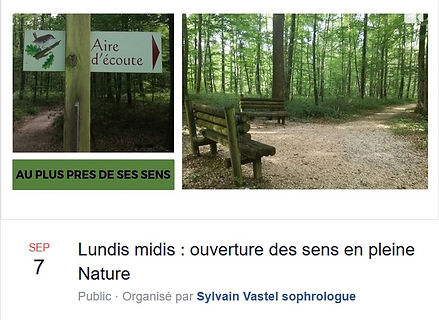 Ouverture_des_sens_à_la_forêt_de_Seill