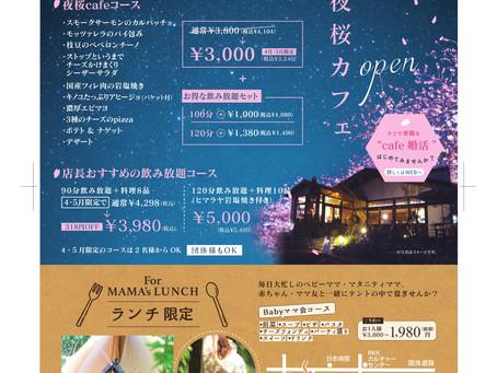 4・5月限定夜桜カフェ