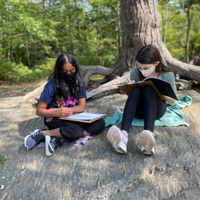 Arts: Sketching time at Point Pleasant Park