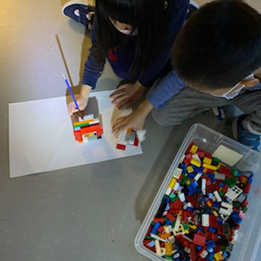 ACADEMICS: Grade Ones experiment with light and shadows for their energy unit