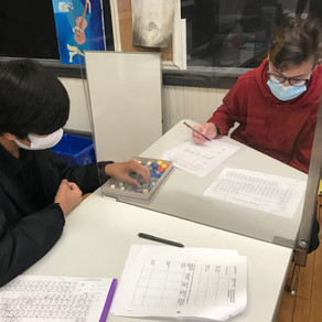 Academics: Creating Ionic Compounds and Exploring Earth Worms with the Grade Nine Students