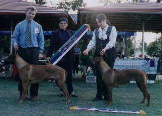 1999 ChampionshipShow