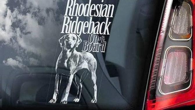 Ridgeback on Board Decal