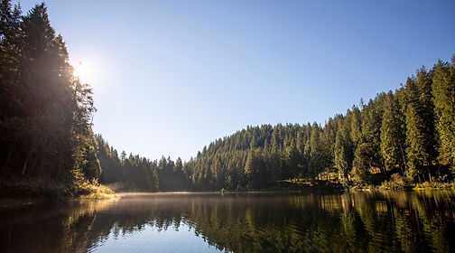 Loon Lake Images 600px-5.jpg