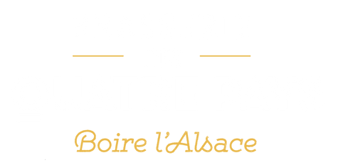 LOGO-vectorise-blanc%20relief_edited.png