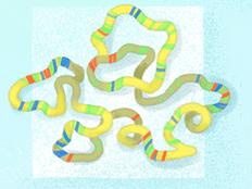 О системной биологии хроматина