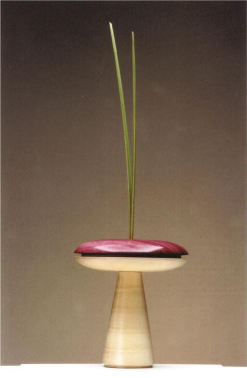 vaso-cogumelo