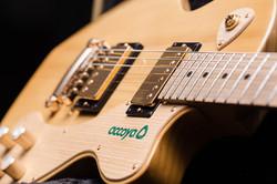 BJB Accoya Guitar 2