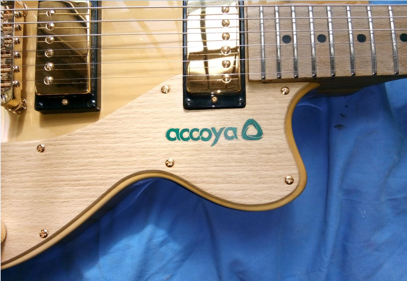 BJB Accoya Guitar for AXS 2