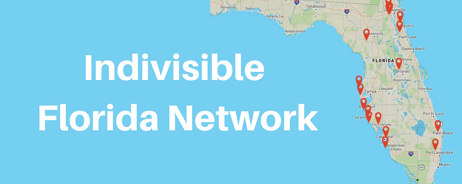 Indivisible Florida Network graphic.png