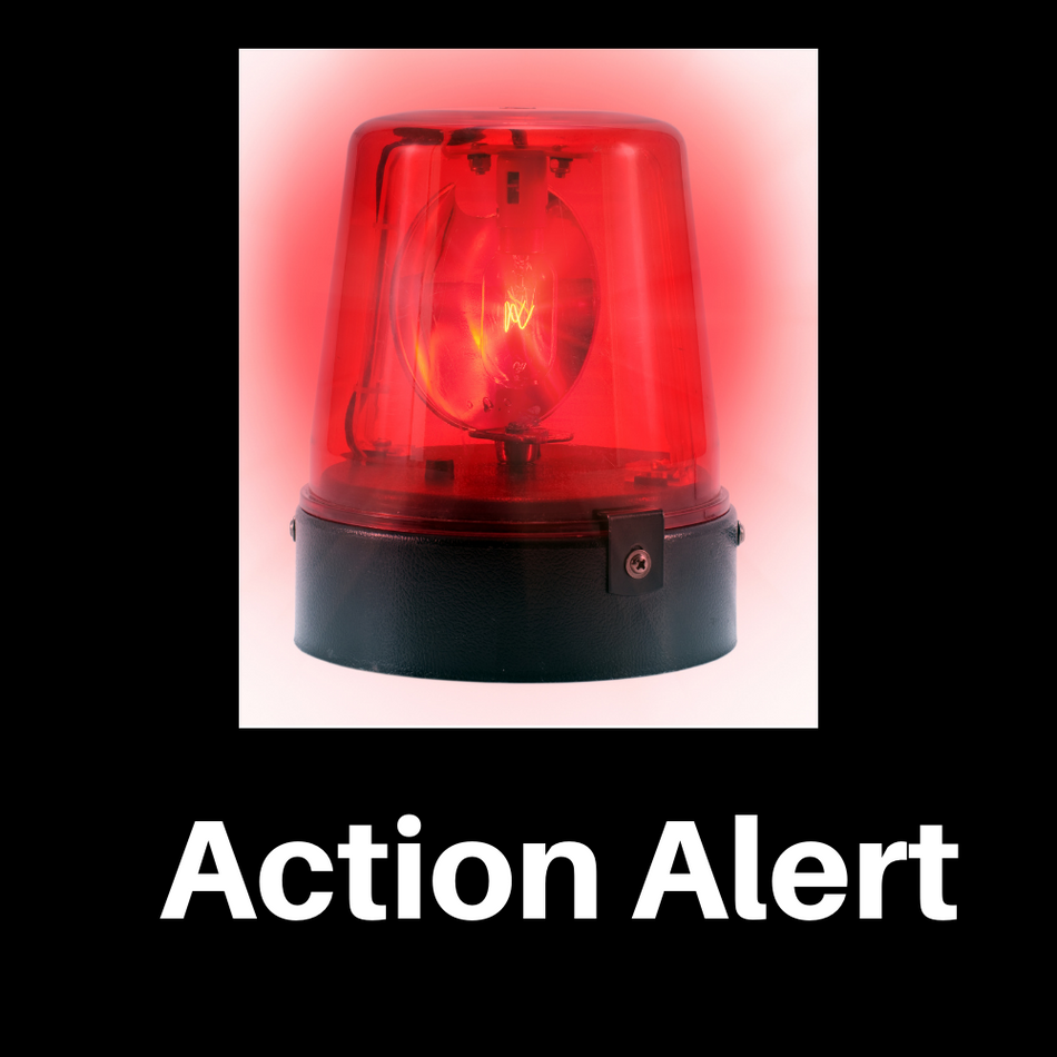 Action Alert: Petition to Oppose HB1/SB484 and Reject This Power Grab by Governor Ron DeSantis
