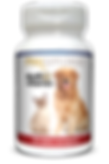 Mockup_PetSupplements_Multivitamin_red&b