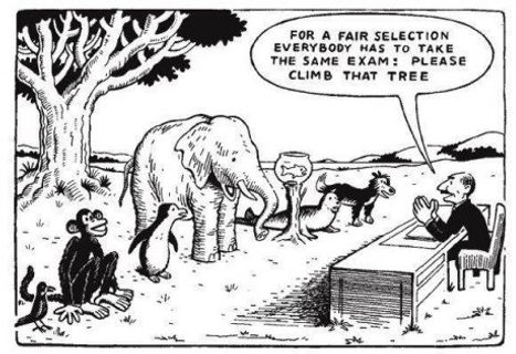 Today's Flawed Education System