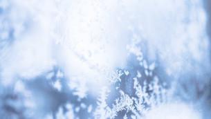 Largest Snowflake