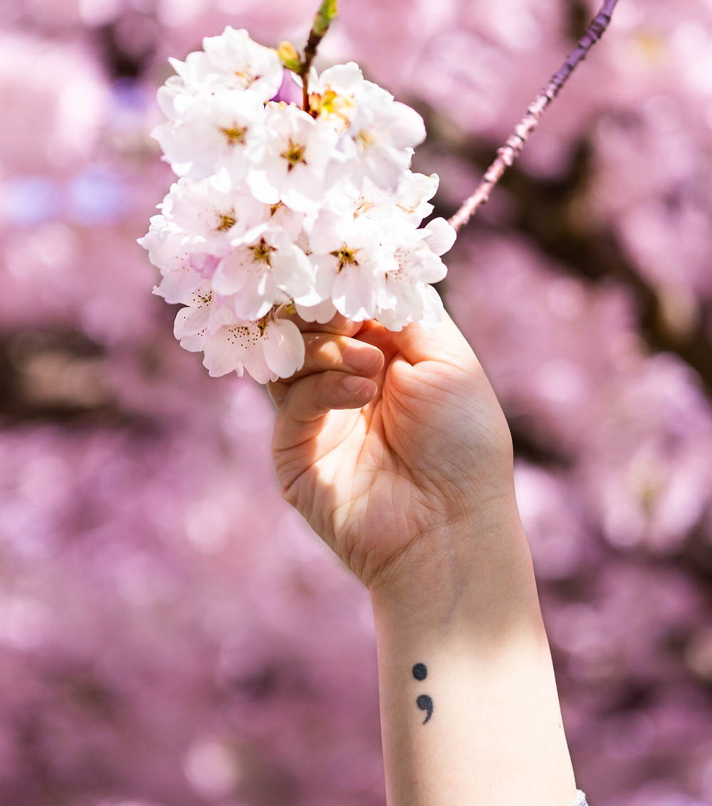 Hand reaching out to hold cherry blossoms. Forearm shows semi-colon tattoo.