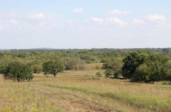 Cowboy Meadows