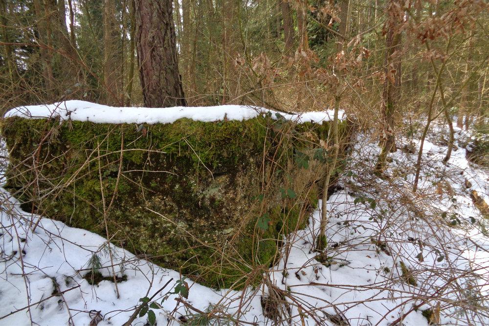 1 Abensberg Lost Place - Mauerreste im Wald