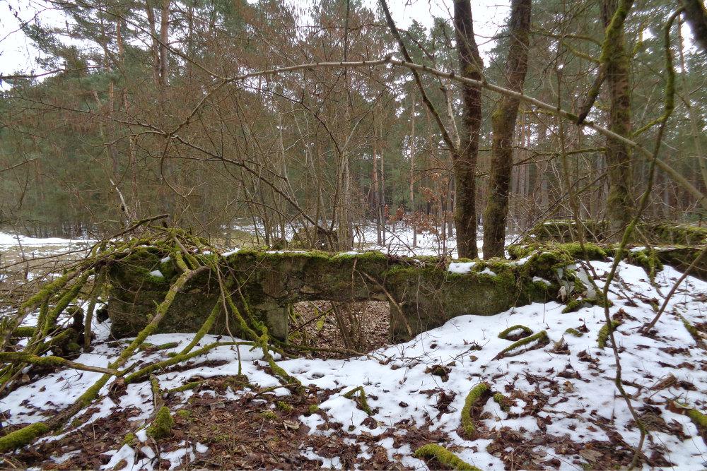 5 Mauerreste im Wald