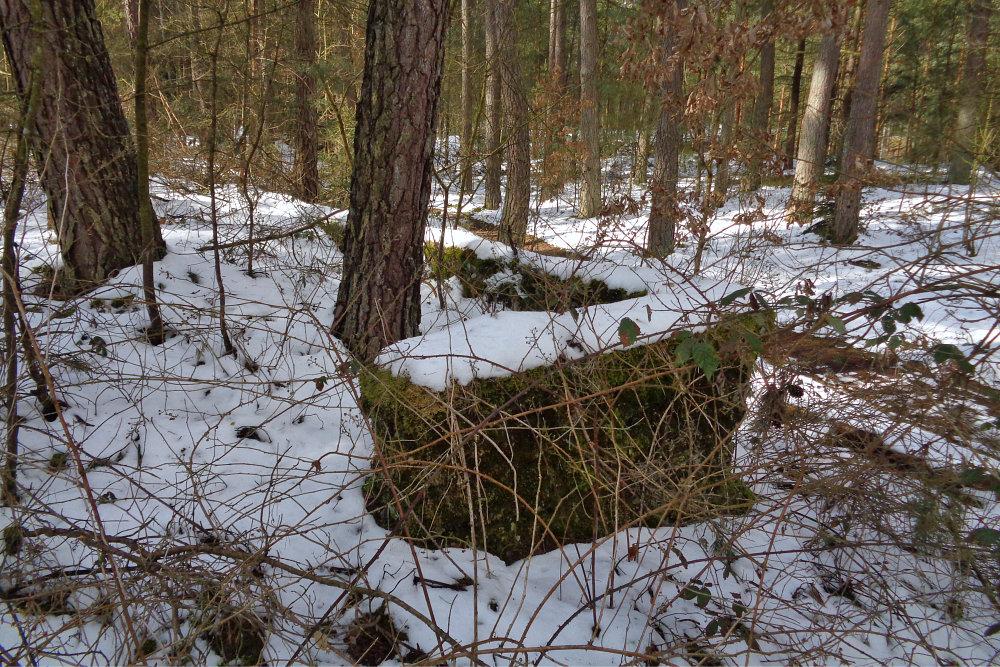 2 Abensberg Lost Place - Mauerreste im Wald