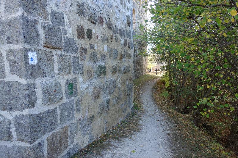 Burgruine Niederhaus 6
