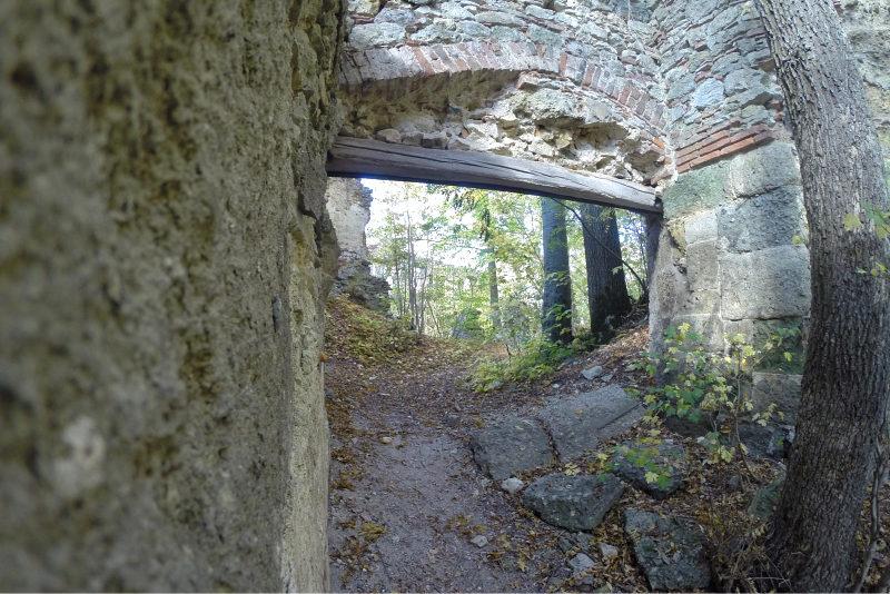 Burgruine Hochhaus 10