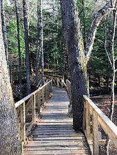 Vermont Guided Hikes