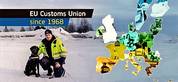 Interim Evaluation of the Union Customs Code