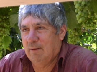 Higinio Ávalos Molina