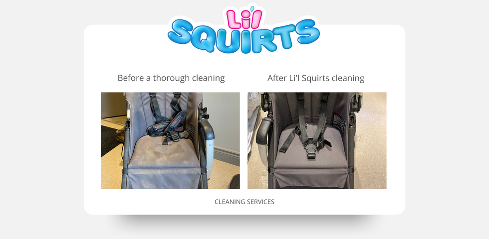 Bugaboo Cameleon Stroller Before and After Cleaning Results