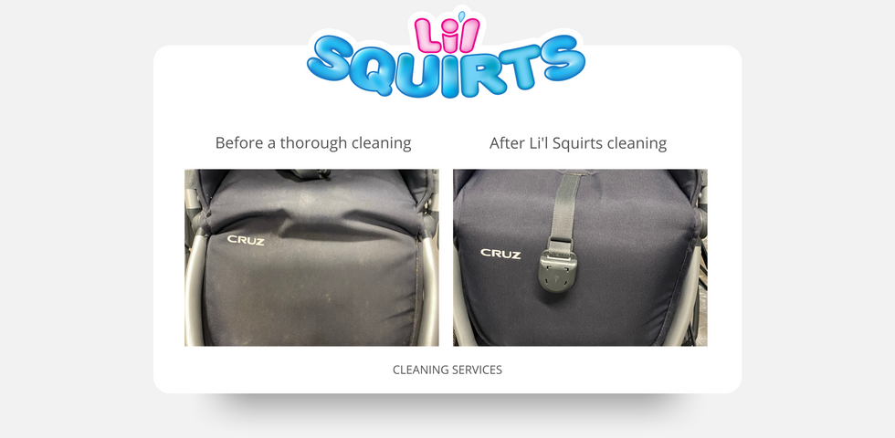 UPPAbaby Cruz Stroller Before and After Cleaning Results
