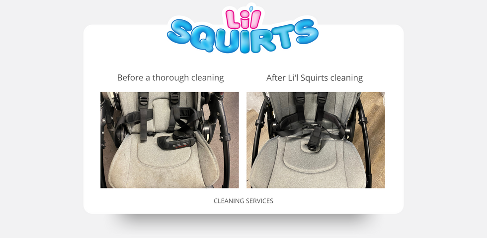 Bugaboo Ant Stroller Before and After Clening Results