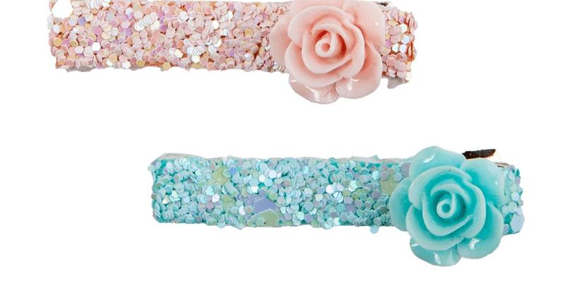 Barretes boutique Glitter Rostte