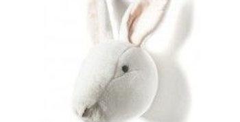 Mini trophée lapin - Bibib