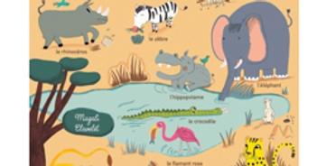A découvrir - Mes premiers animaux