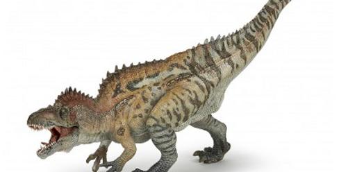Les dinosaures - Acrochantosaurus