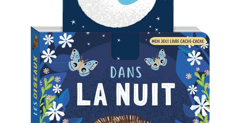Dans la nuit - Mon joli livre cache cache