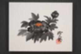 里見浩太朗 黒牡丹 27.3x35.1cm.JPG