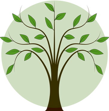 tree-312507_1280 (1).png