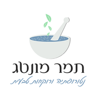 לוגו-אינטרנטי-רקע-שקוף.png